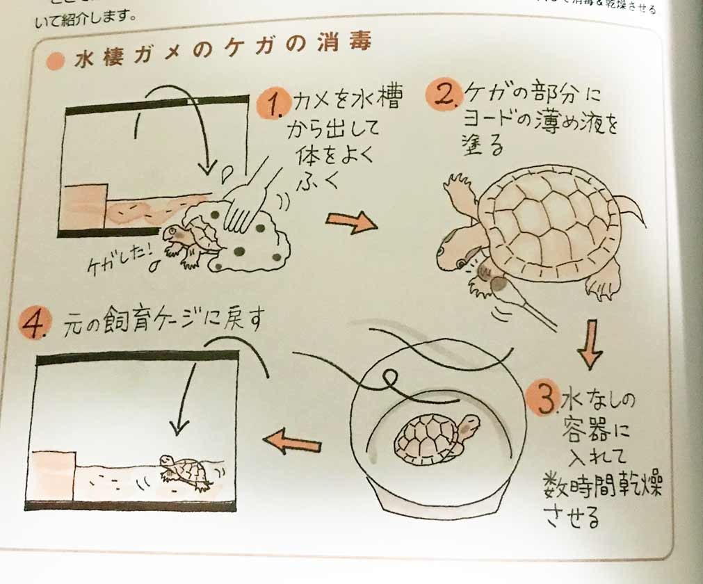 消毒の方法